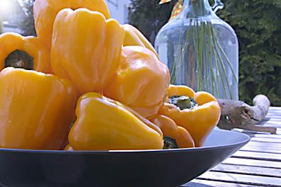 paprika1.jpg