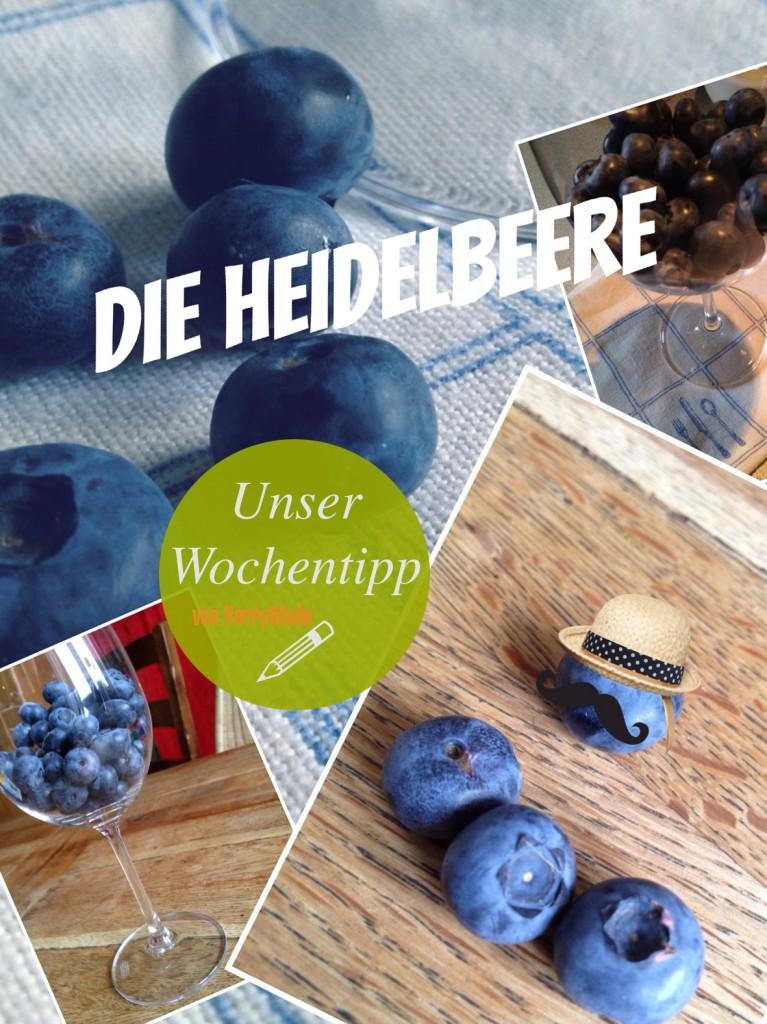 Heidelbeere_1